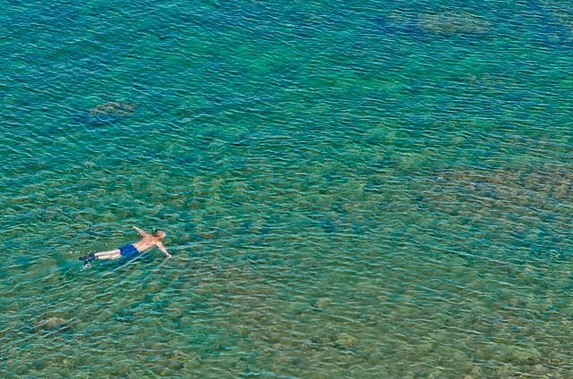 swimming blue