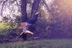 I Just Wanna Fly (AppalachianAfro) Tags: flying wings levitation 365 nnp