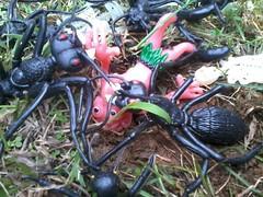 Ant Prey (Rat Dragon) Tags: monster vintage ant rubber spooky hong kong ants creature kooky jiggler