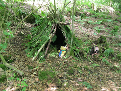 Scout Dens July 2011