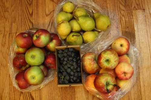 2011 Stone Ledge Farm Share, Fruit Share #2