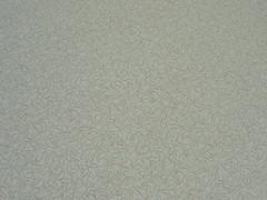 DSCN4441