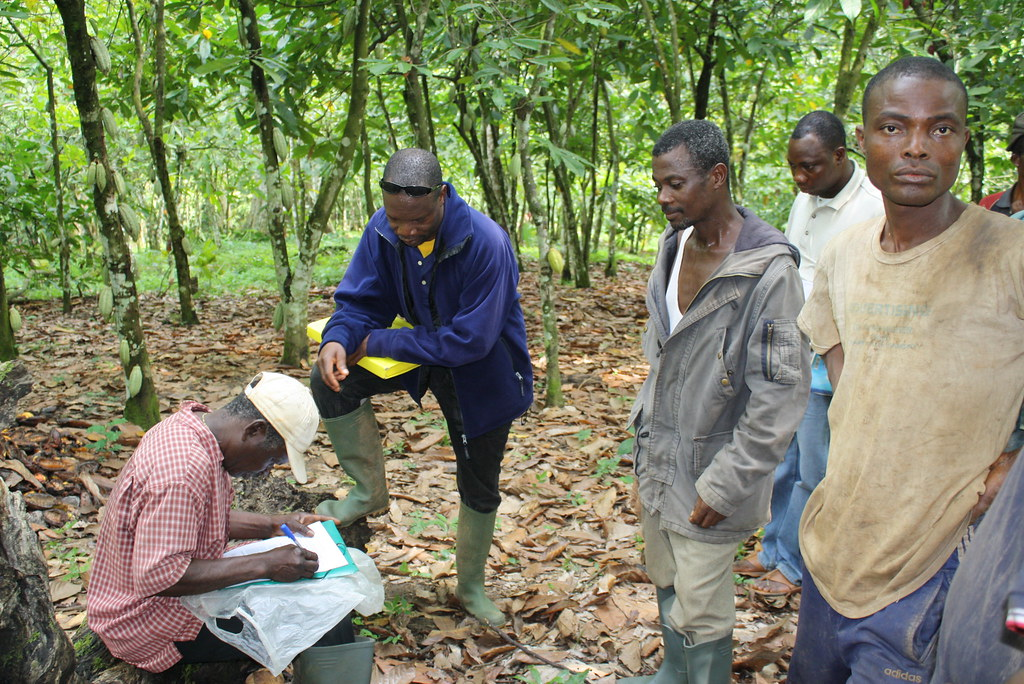 Inspection interne cacao bio Togo 2