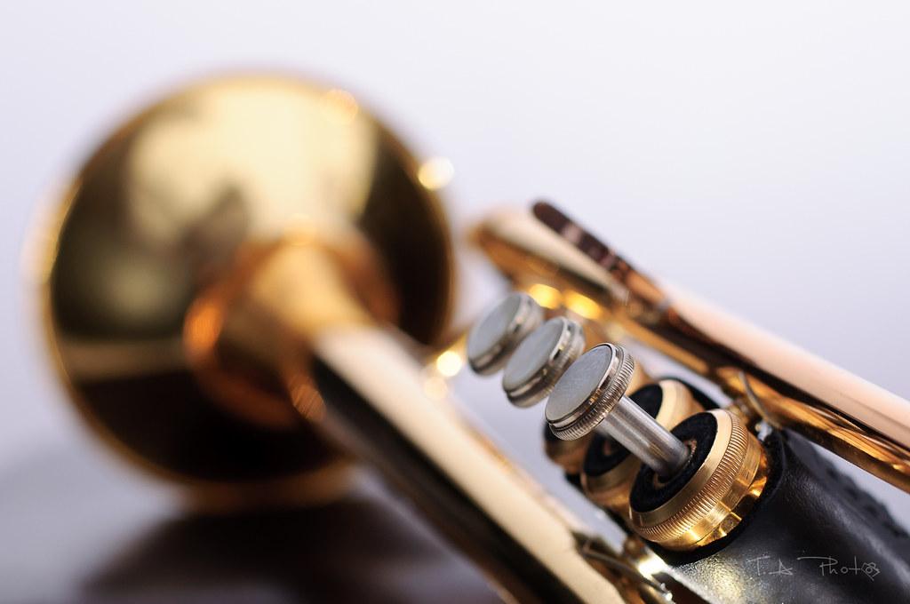 T - Week 39 - Trumpet