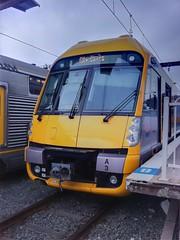 CityRail's new Waratah train or A set - A3 (Photography Perspectiv) Tags: train suburban emu passenger waratah hdr cityrail iphone