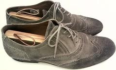 A pair of Fluevog gray suede wingtip oxford shoes