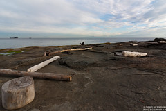 Driftwood (Dawid Werminski) Tags: wood sky seascape canada water rock canon lens landscape island eos rebel bc angle wide columbia tokina driftwood stump tugboat british mm ultra f28 dawid gabriola xsi 1116 450d werminski