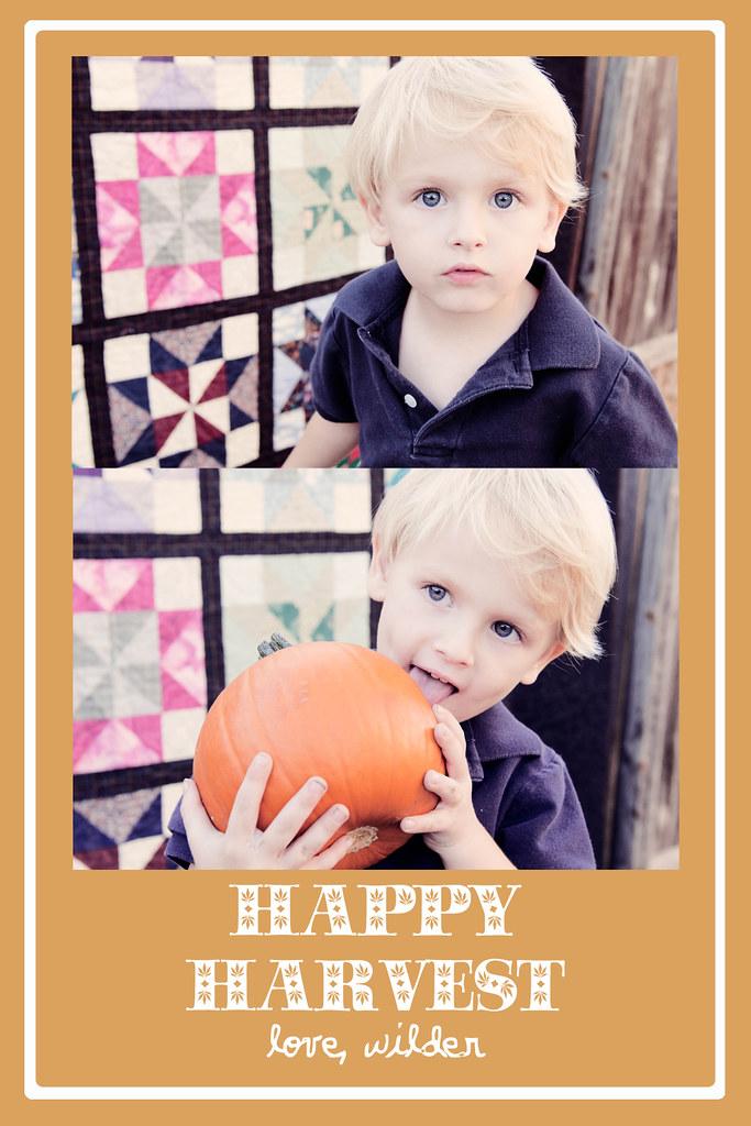 Happy Harvest3