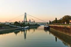 Deutzer Hafen (Q-BEE) Tags: autumn light oktober river golden licht herbst cologne köln hafen rhine sonne rhein poll deutz pollerwiesen rheinau deutzerhafen