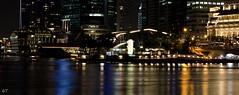 Landscape at The Esplanade (gilbertt2) Tags: night landscape nikon singapore esplanade nikon50mmf14d d7000 nikond7000