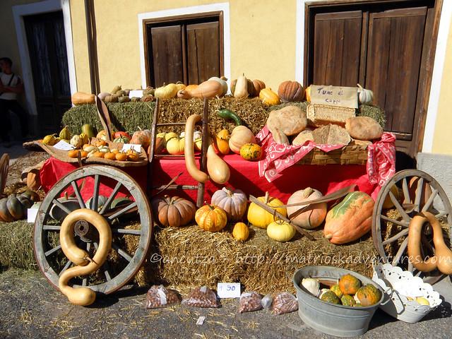 immagine carro con zucche