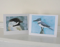 Chickadee and kingfisher cards (mbrichmond) Tags: bluejay chickadee kingfisher owl flicker vireo yellowbirds birdprints assortedbirds maryrichmonddesign birdcards naturecards songbirdcards frommywatercolors