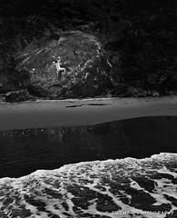 Bear CRUSH Media (Silent G Photography) Tags: ocean california ca blackandwhite bw beach water vertical dark rocks pacific flash climbing highway1 bouldering rockclimbing stinsonbeach mickeysbeach strobist markgvazdinskas canont3i silentgphotography