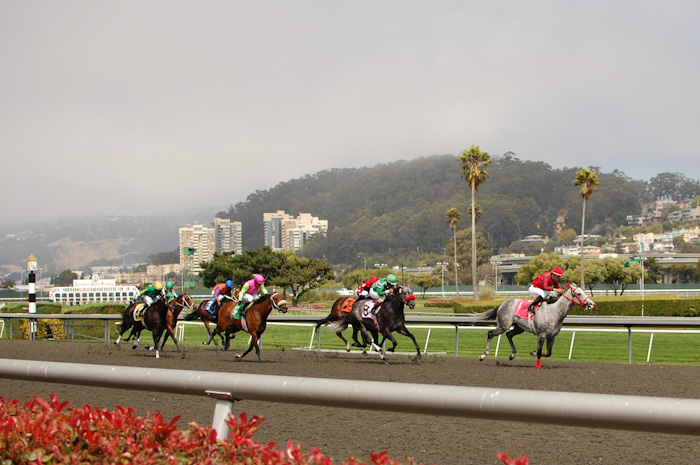 @ Golden Gate Fields