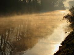 Early morning mood (johan van moorhem) Tags: sunrise belgium belgique belgië westvlaanderen flanders zonsopgang vlaanderen oostkamp morningmood canalbrugesgent vaartbruggegent