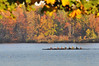 Rowing in the Fall (GlennCantor (theskepticaloptimist)) Tags: autumn fall water newjersey 8 crew princeton rowing mercercountypark lakemercer