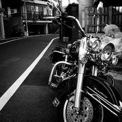2011 Tokyo