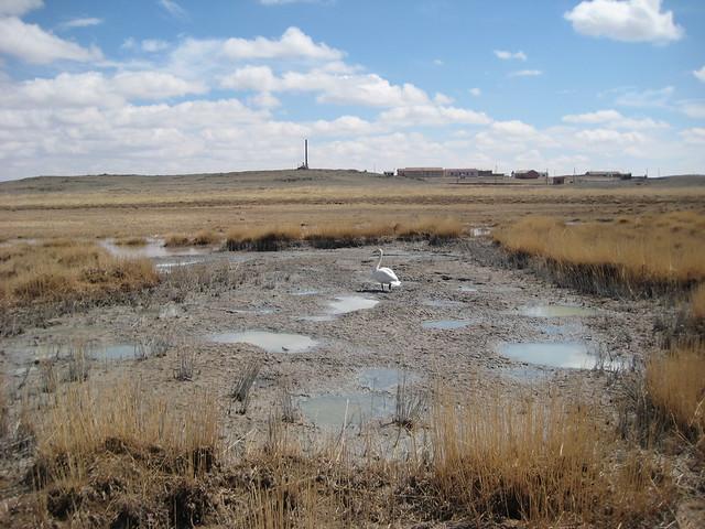 Соленое озеро рядом с Сум Хох Бурд