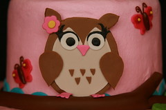 "fondant owl • <a style=""font-size:0.8em;"" href=""http://www.flickr.com/photos/60584691@N02/6153197645/"" target=""_blank"">View on Flickr</a>"