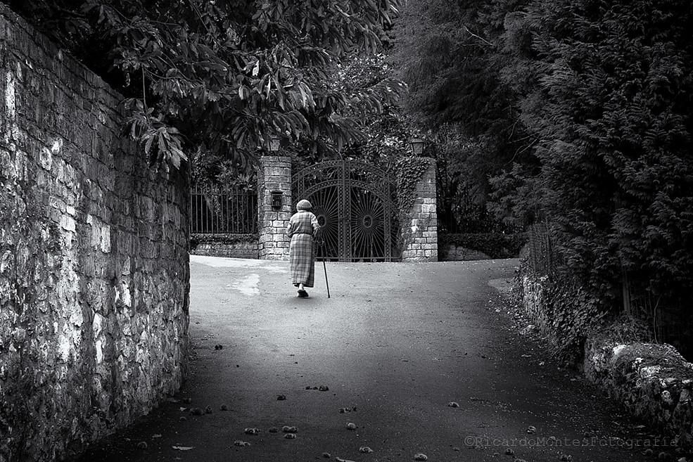 A las puertas del Campuloto