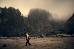 at Cape Disappointment (sparth) Tags: leica trees beach silhouette yellow fog pine walking washington leo son september have cape brouillard disappointment marche m9 capedisappointment leicam9