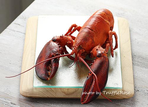 龍蝦餐-110920