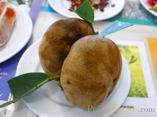 Mabolo Rare Fruit