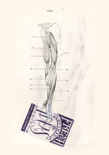 01 Arm