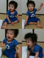 とらちゃん、いい子だから寝てくれー (2011/9/21)