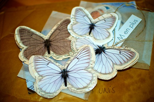 Paper Butterflies: A Collection