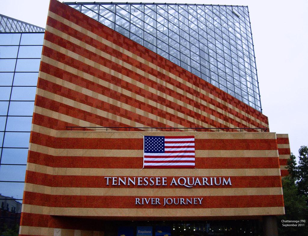 Tennessee Aquarium -- Chattanooga (TN) September 2011