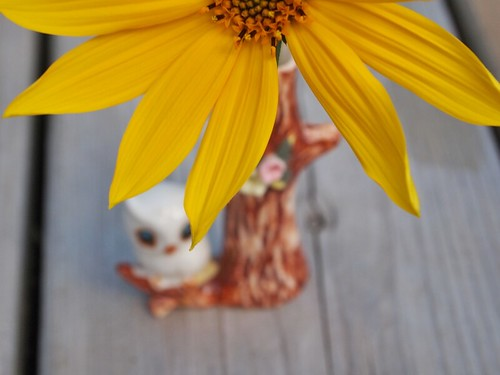 little owl vase