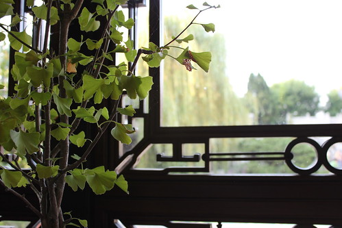 20110910. lan su chinese gardens, portland..