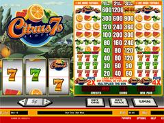 Citrus 7s