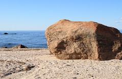 Stony Creek Granite Gneiss Glacial Erratic (sandy richard) Tags: geology wildwood wildwoodstatepark newyorkstateparks longislandbeaches sandyrichard longislandgeology sandrarichard wildwoodstateparkgeology
