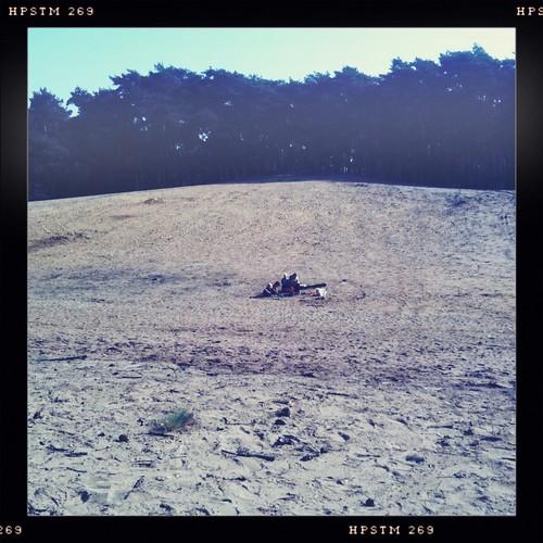 Kempische zandgrond Geel