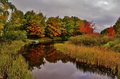 Early Fall Reflections (chumlee10) Tags: trees sky color reflection water wisconsin clouds outdoors stream sony mercer wi a300 wow1 wow2 wow3 musictomyeyeslevel1 ironcount