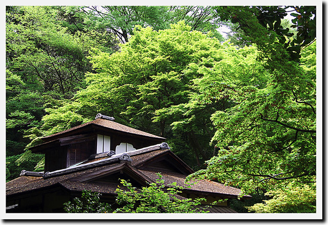 110430_132111_横浜_三渓園