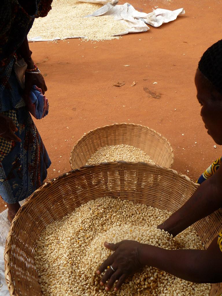Marché maïs Togo