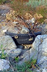 DSC_0057 Tire Along the Creek (John Dreyer) Tags: california copyright nature trash john photo los junk angeles tire litter southern national credit environment waste forests angelesnationalforest disregard 2011 dreyer nikond5100