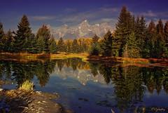 Schwabacher's Landing (Patrick N. Oglesby) Tags: autumn mountains reflections bravo grandtetonnationalpark godlovesyou cottonwoodtrees schwabacherslanding