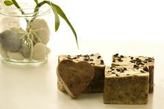 Jabón de Árbol de Té (La Xana Artesana) Tags: soap galeria artesanal jabón artesano jabones aceiteoliva acné jabonesnaturales aceiteesencial aceitedecoco antiséptico jabonesartesanos aceitedealmendra regenerativo árboldeté laxanaartesana jabonesaceite