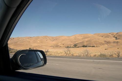 velvety hills