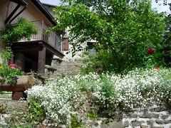 19 (Divina Toscana) Tags: ski resort abetone