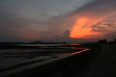 A cavallo di una due ruote (Pirkipetola) Tags: sunset orange clouds reflex asia cambodia tramonto nuvole rice confine arancio arancione 2010 riso riflesso risaie cambogia frontiera indocina earthasia indocine flickrtravelaward