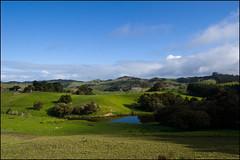Landscape near Maungaturoto