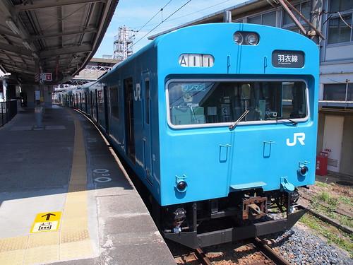 P8118018