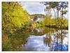 Reflets d'Automne .......... aux Eyzies , en Périgord (lo46) Tags: france automne couleurs dordogne rivière périgord reflets vézère aquitaine leseyzies lo46 leseyziesdetayac lavézère artistoftheyearlevel5