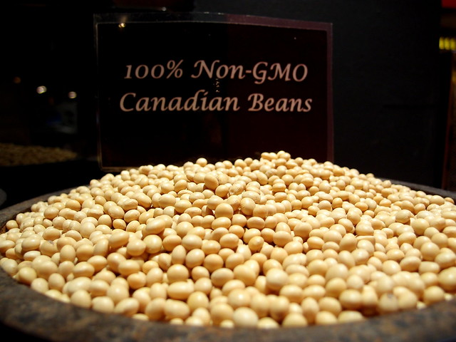 Buffet Town Uses Non-GMO Canadian Beans