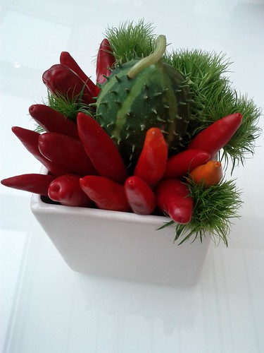 Hot pepper and prickly cucumber centerpiece, Milan, Italy